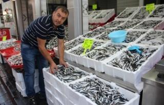 Av yasağının sona ermesiyle balık tezgahları...