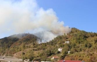 Orman yangını rüzgarın etkisiyle büyüdü