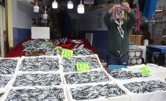 Karadeniz'de hamsi görüldü, kilosu 10 TL'ye düştü