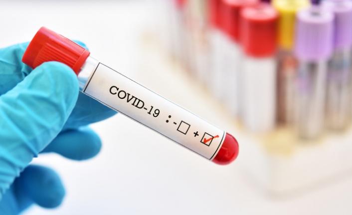 Koronavirüs tehdidi yeniden baş gösterdi
