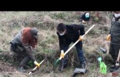 250 adet fidan toprakla buluştu